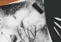 Laki za pastele/oglje/grafit